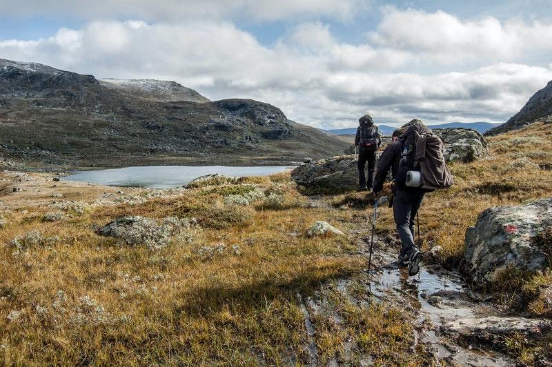 Lợi ích của Trekking